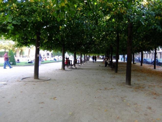 Trees lining a garden in Place des Vosges