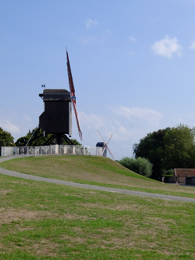 Windmill on top of grassy hill