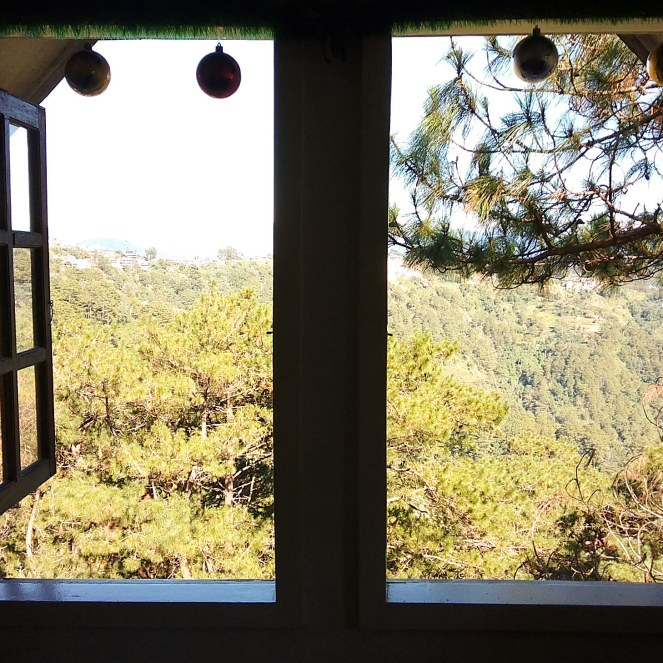 Open window with a view of pine trees and mountains